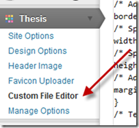 Thesis WP - Custom File Editor
