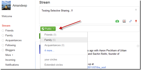 Selective sharing in Google Plus