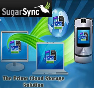 SugarSync Online Storage Service